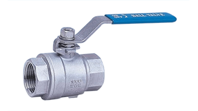 Stainless BSP 2 Piece Ball Valve