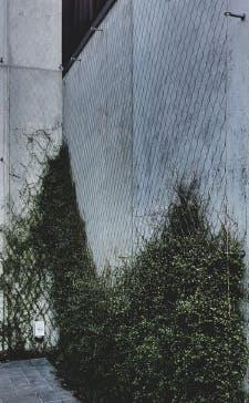 Stainless Meshnet Foliage System