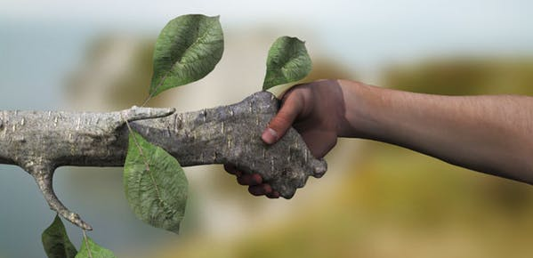 Change your lifestyle to help the Earth