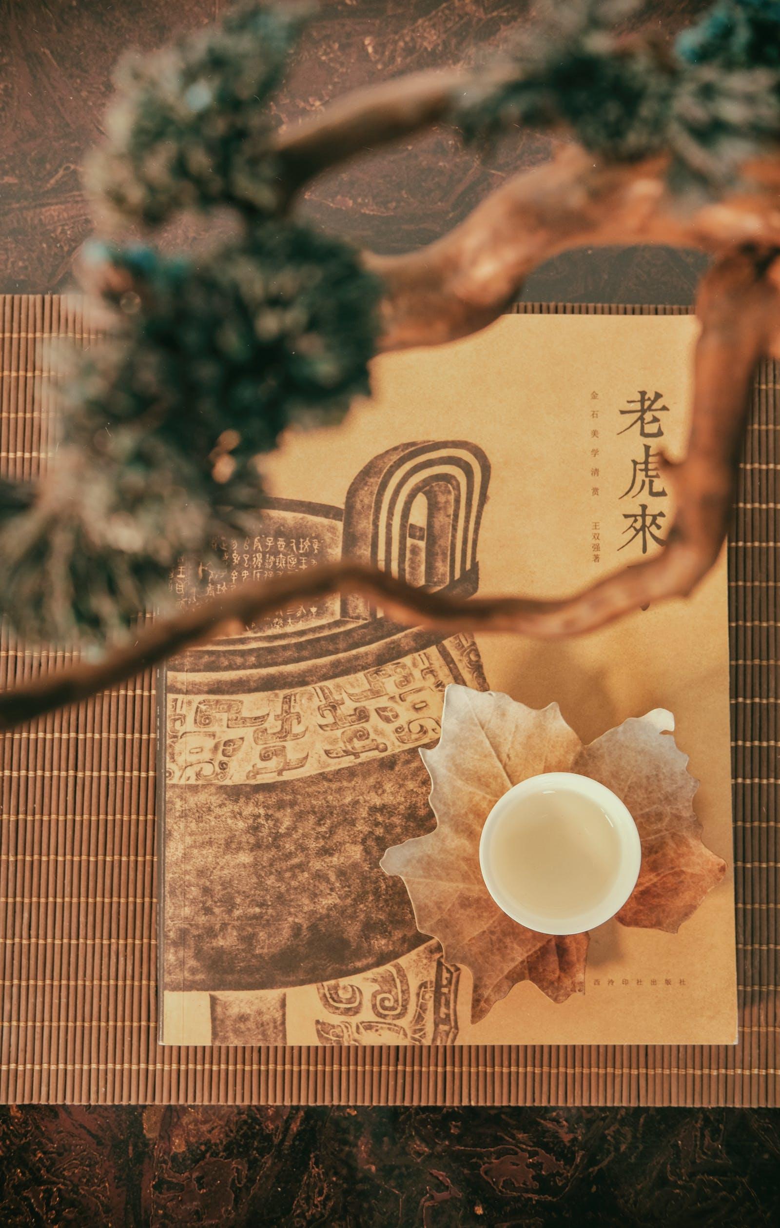 Le Reïki méthode naturelle de soin japonais par imposition des mains