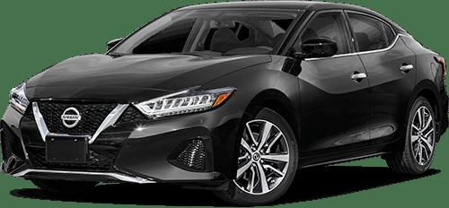 Nissan Maximas Car Image