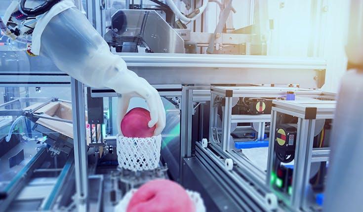 Cómo extender los procesos de automatización a toda la fábrica