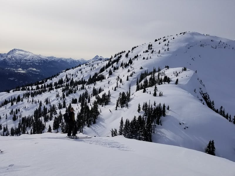 A skier on a mountain on Vancouver Island