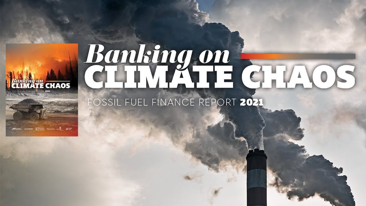 Rainforest Action Network Banking on Climate Chaos