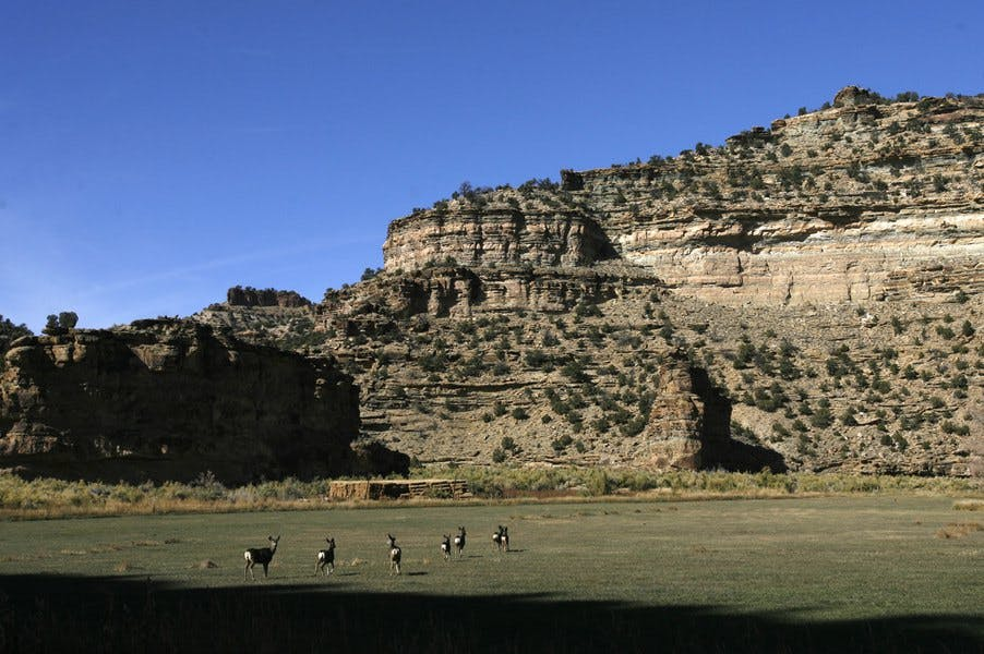 Utah's Book Cliffs have been leased out for oil and gas projects.