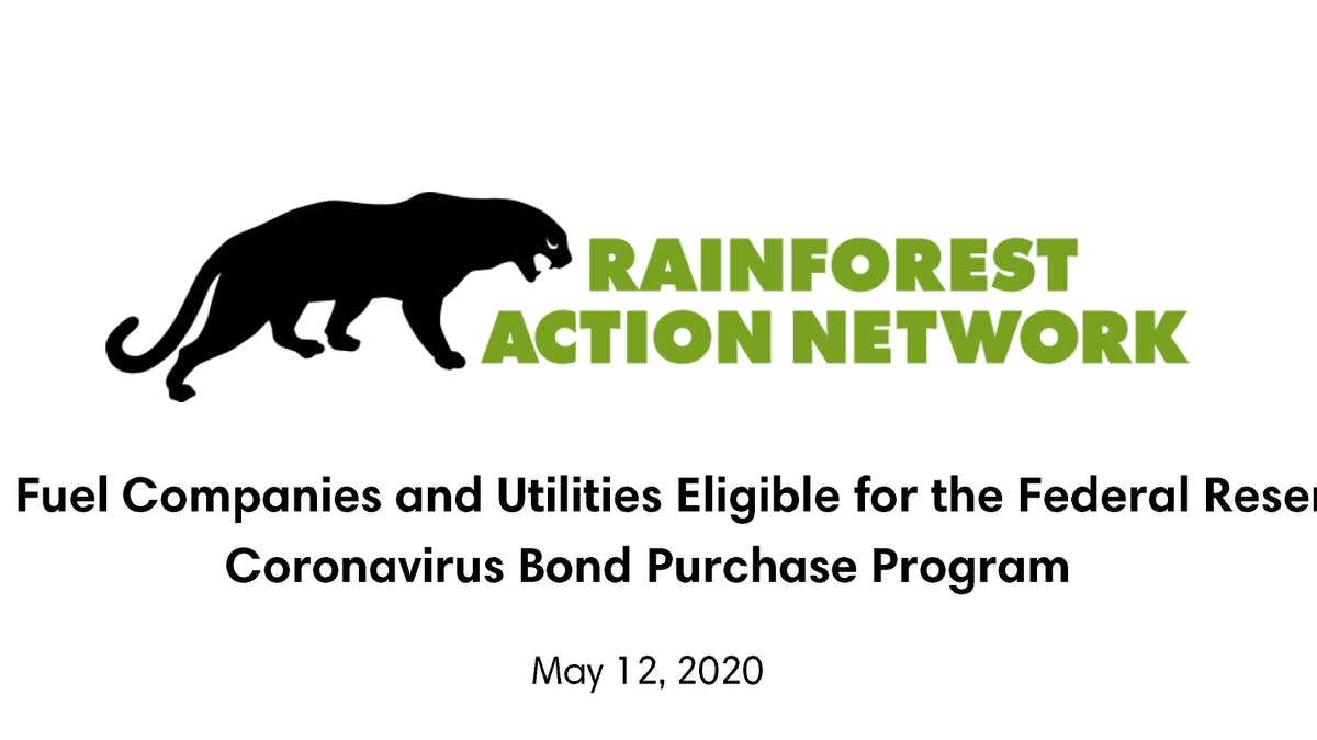 Rainforest Action Network Federal Reserve report cover