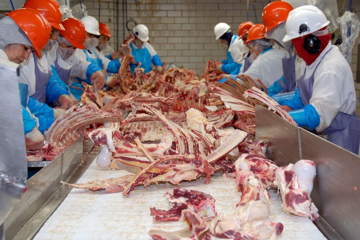 Meatpacking plant workers