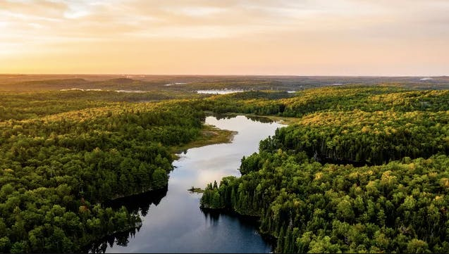 A river winds through a forest at sunset.