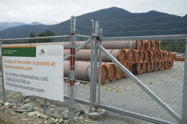 Pipes for the Trans Mountain expansion project are seen at a storage facility near Hope, B.C., on Sept. 1, 2020.