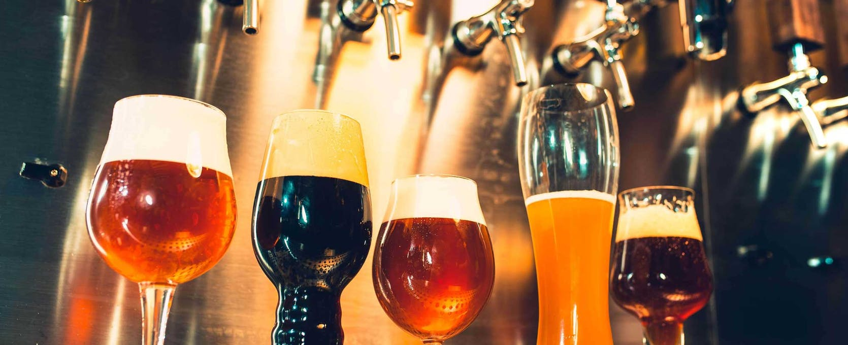 Craft brewery displays a sampling of beer on tap