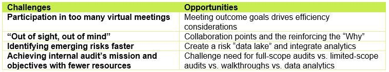 Agility and internal audit do more with less - challenges and opportunities