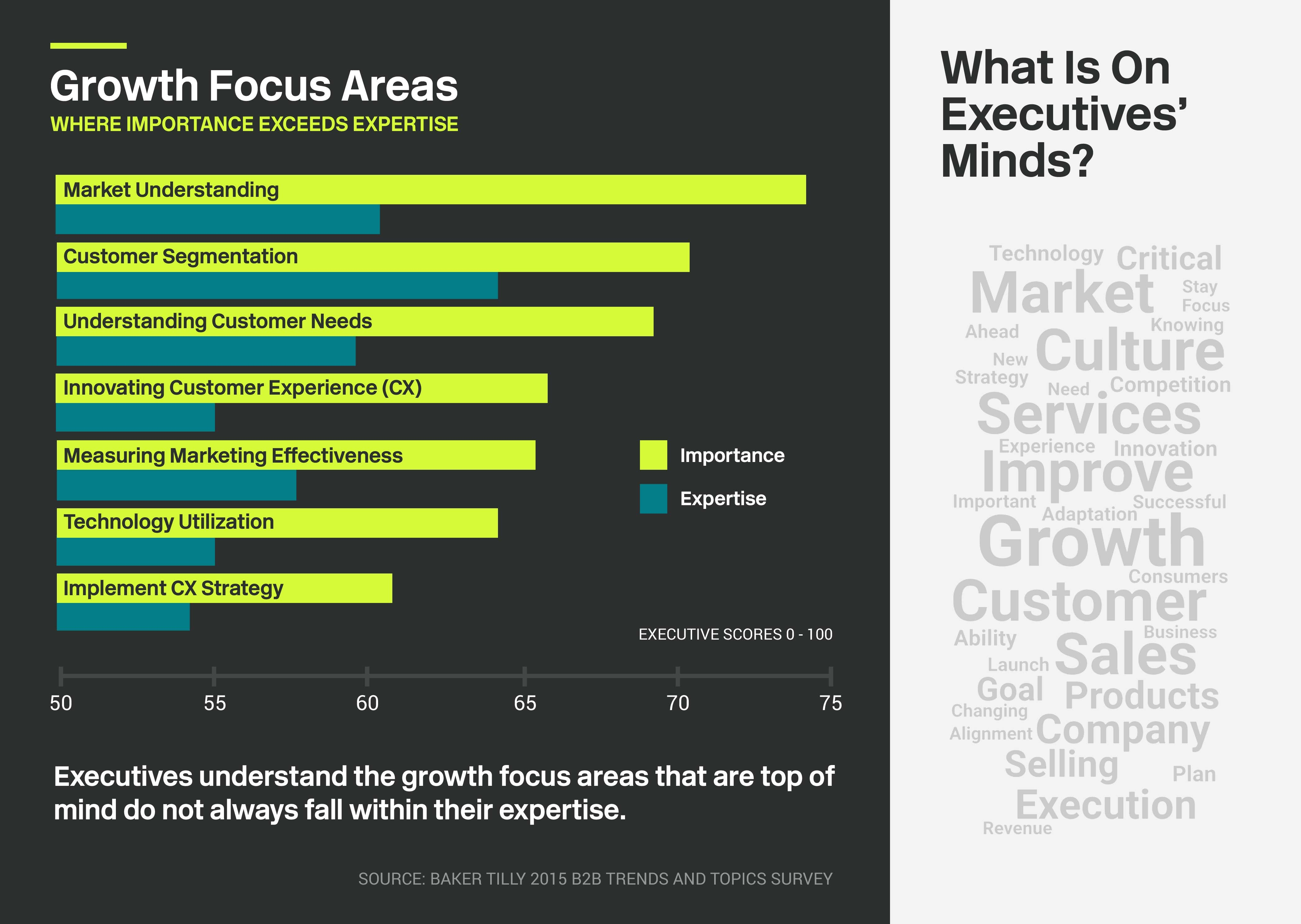 Growth focus areas and areas that are top of mind to executives