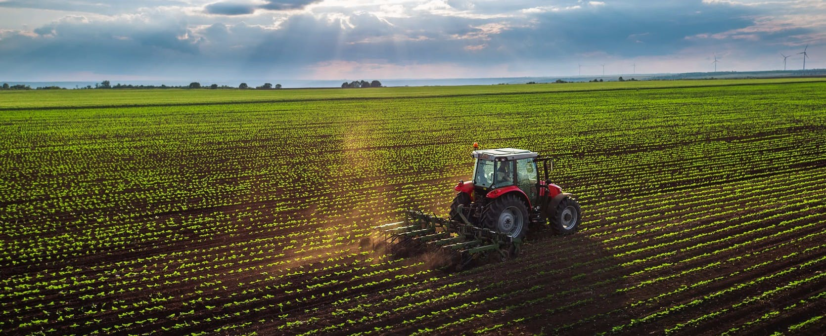 Tractor cultivating field at the heart of the agribusiness industry