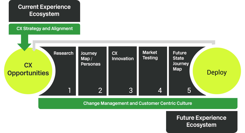 Experience ecosystem