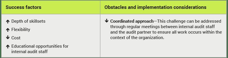 subject matter expertise co-sourcing internal audit
