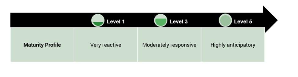 Maturity spectrum for supply chain disruption preparedness