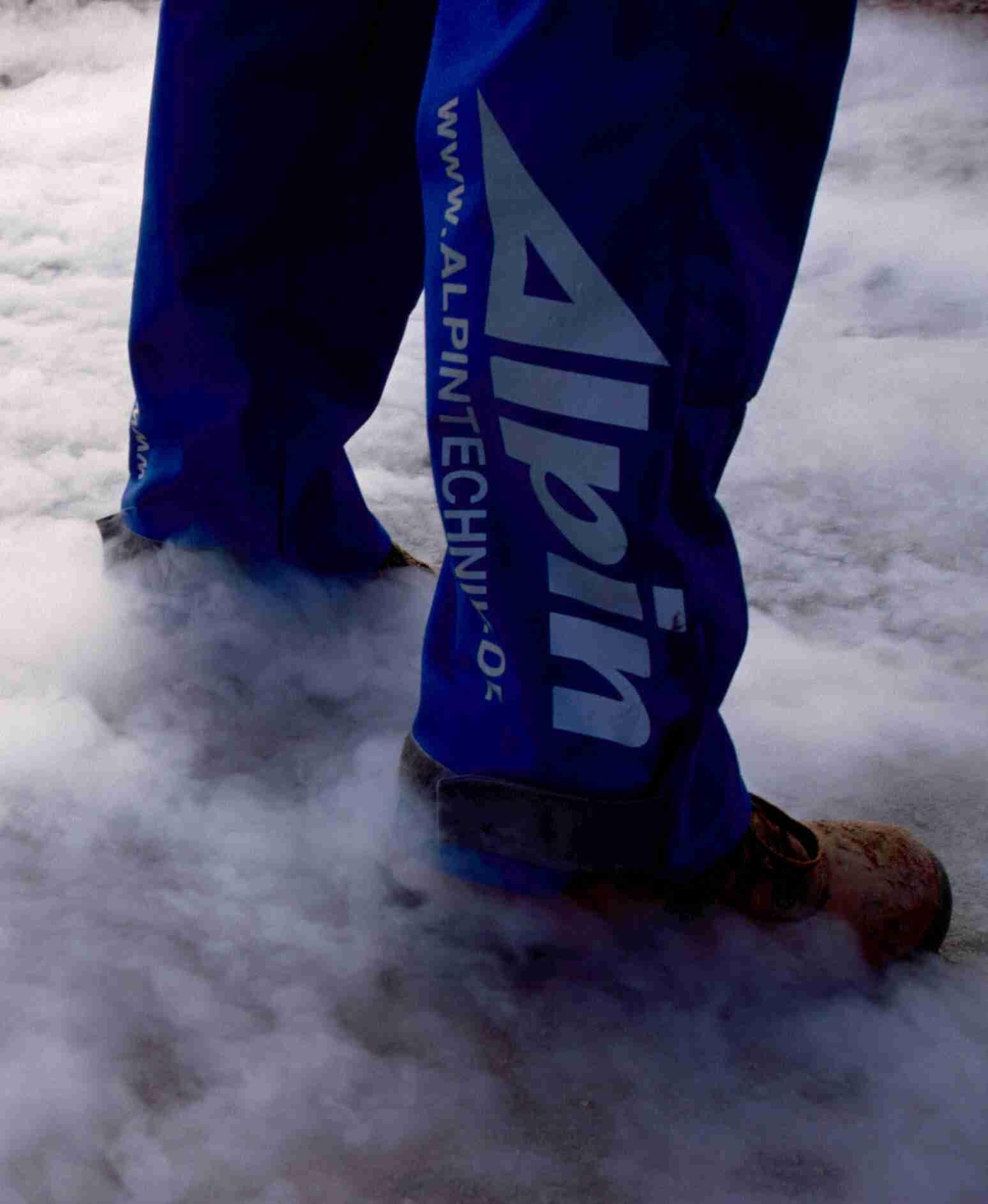 Alpinbein im Nebel