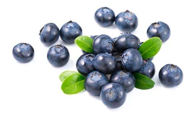 organic wild blueberry