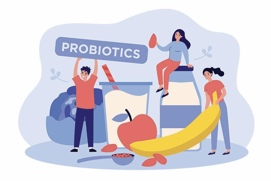 gut health illustration