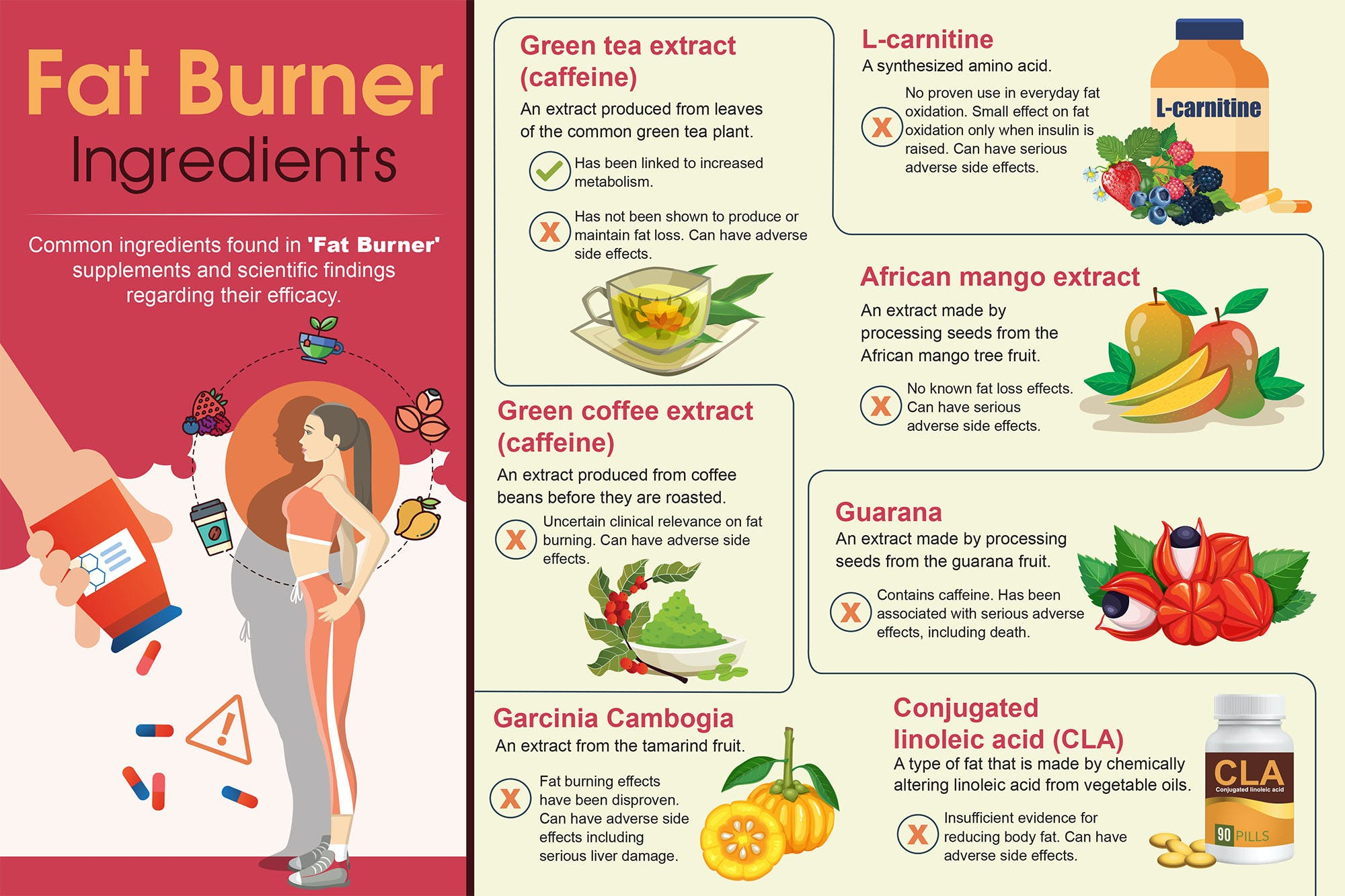 fat burners dangers infographic