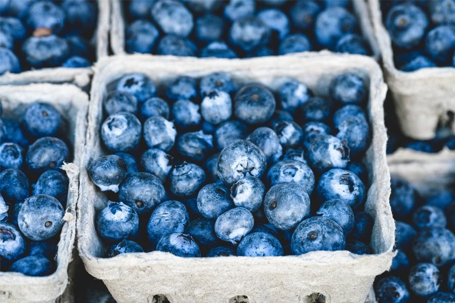 6 Reasons Why Freeze-Drying Will Change The World