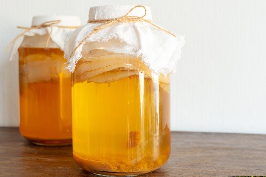 Kombucha fermenting
