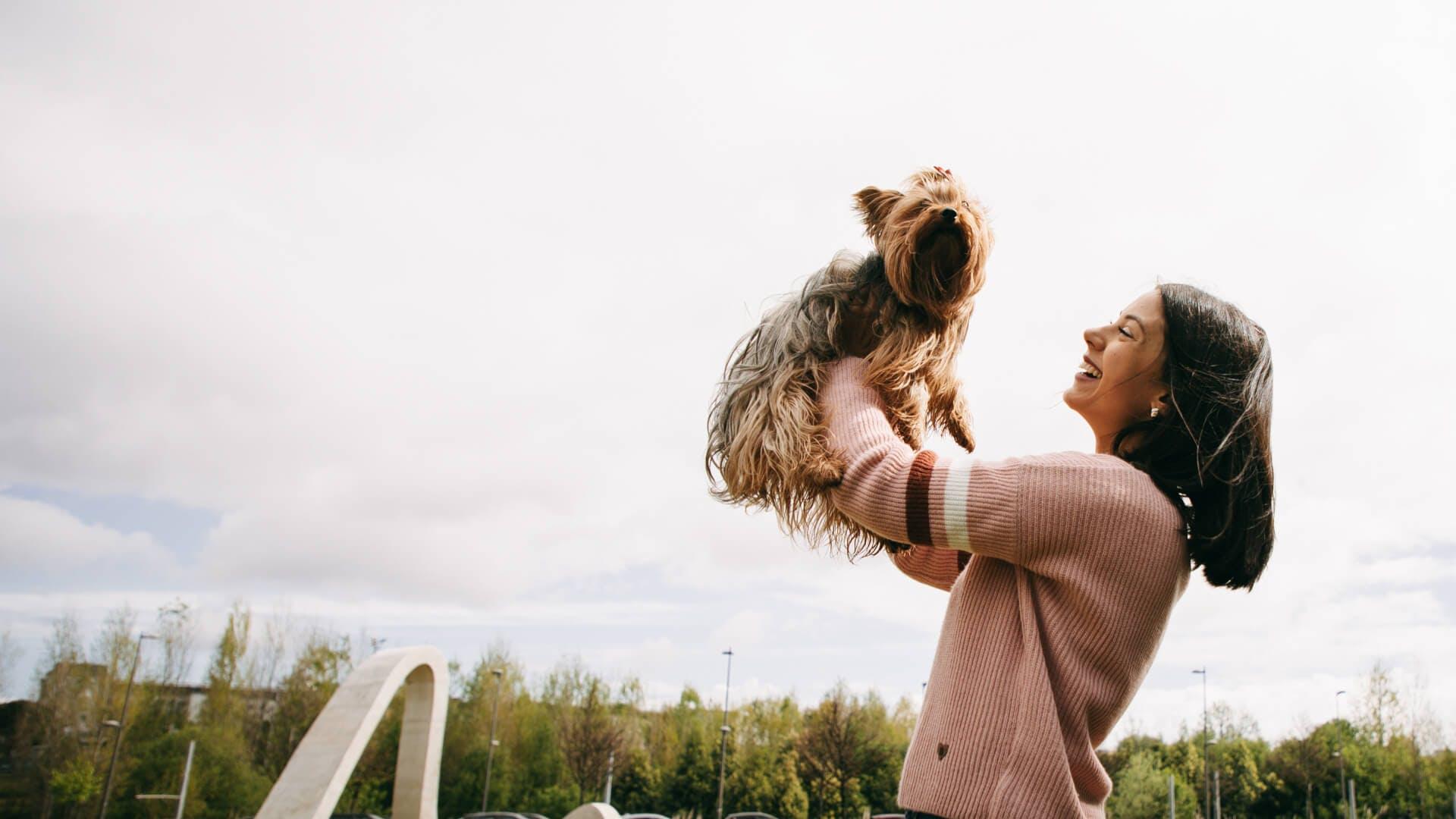 Uma mulher feliz enquanto brinca com o seu cão, um Yorkshire Terrier