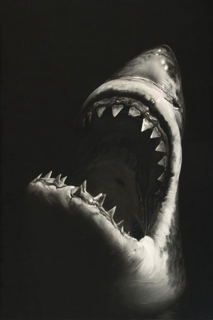 ROBERT LONGO (Brooklyn / New York 1953) - Untitled (Shark 7), 228,6 x 152,4 cm, monogrammé et daté 2008 Estimation: 400.000 EUR