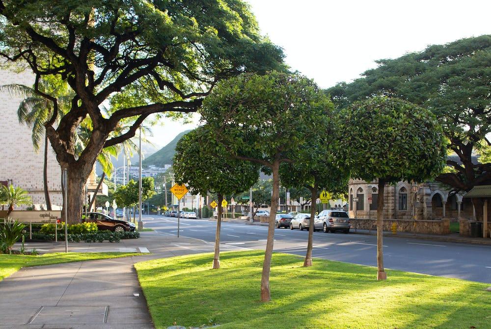 Capitol Place lawn