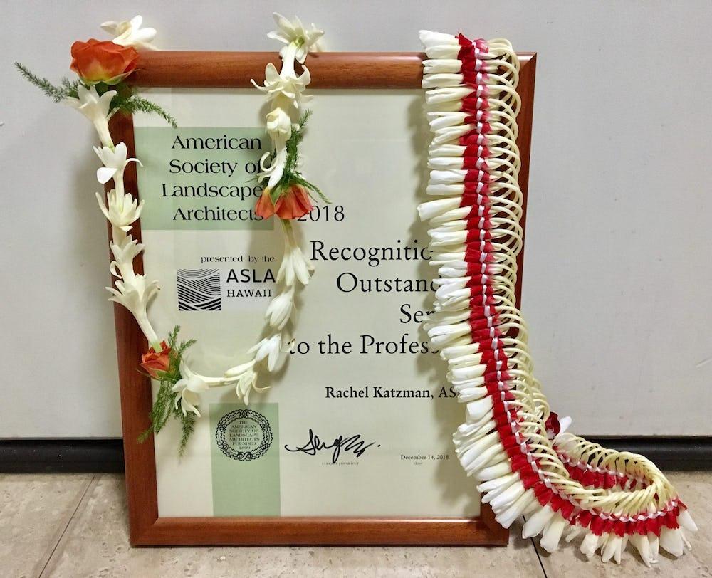 Framed award with lei.