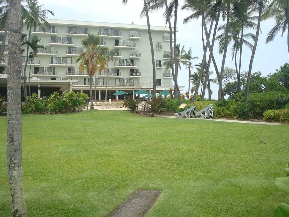 View or Resort's lawn