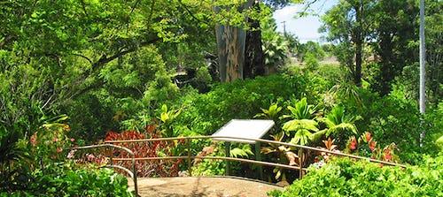 Wahiawā Botanical Gardens