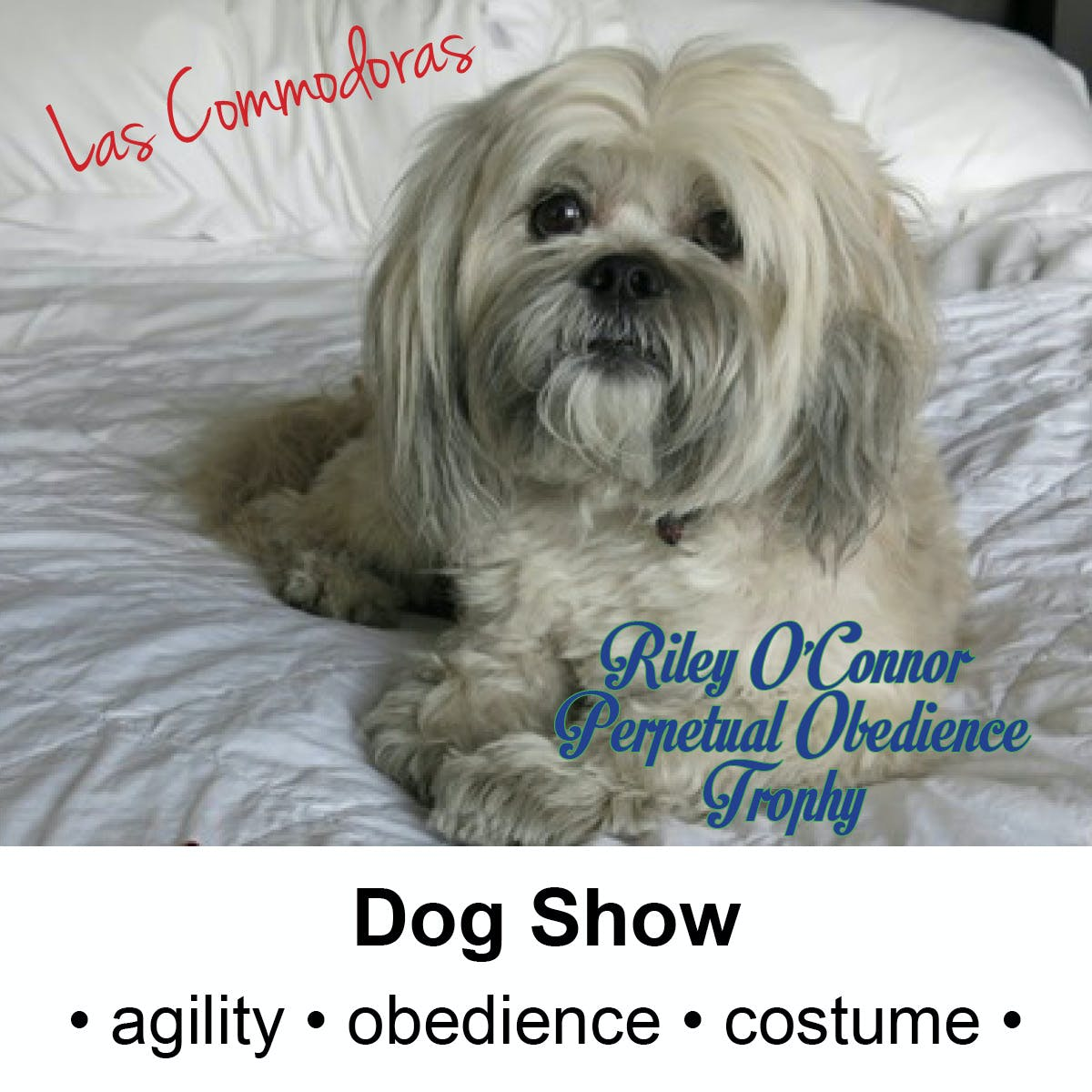 Las Commodoras Dog Show