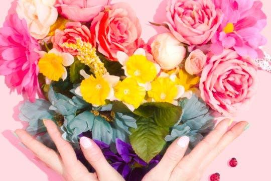 Thumbnail Dillo con i fiori