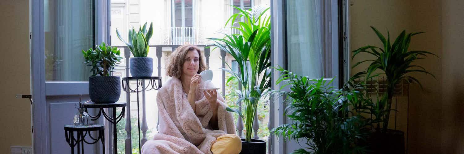 Entretien des plantes d'intérieur en hiver : 6 conseils pratique