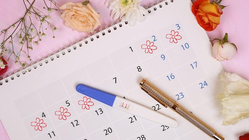 Découvrez comment calculer sa date d'ovulation facilement