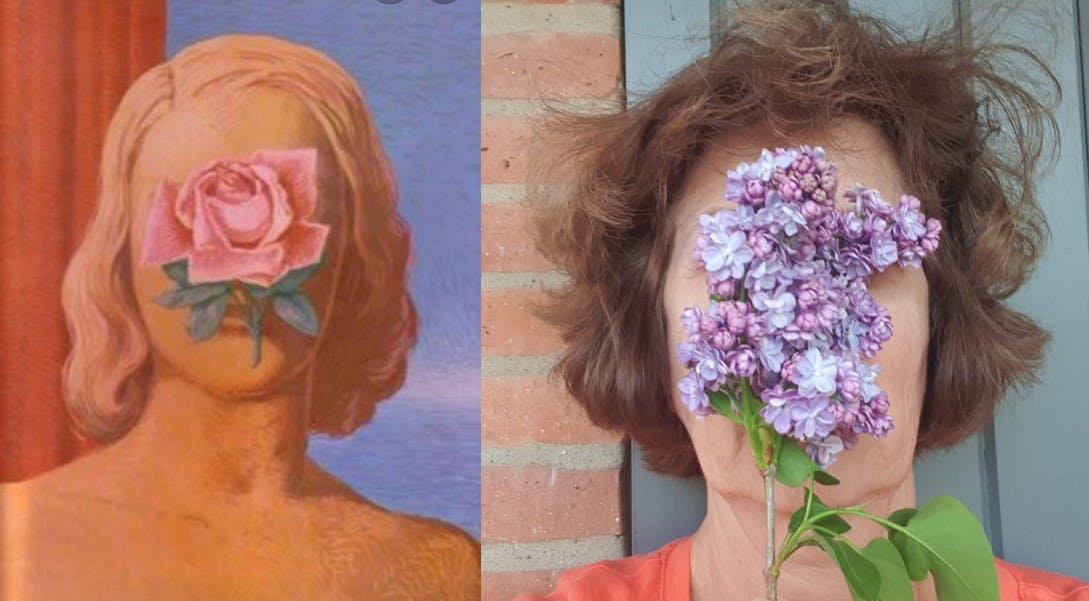 Untiled (Woman's face covered by a rose), René Magritte, 1965, collection privée.