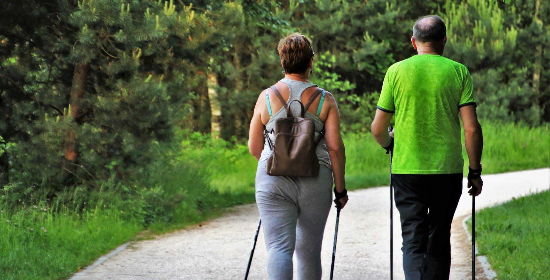 faire de la randonnée pour muscler son cerveau ?