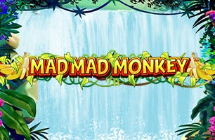 Mad Mad Monkeys