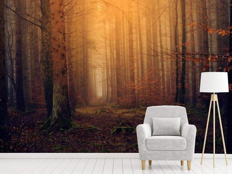 Fototapete Geheimnisvoller Wald