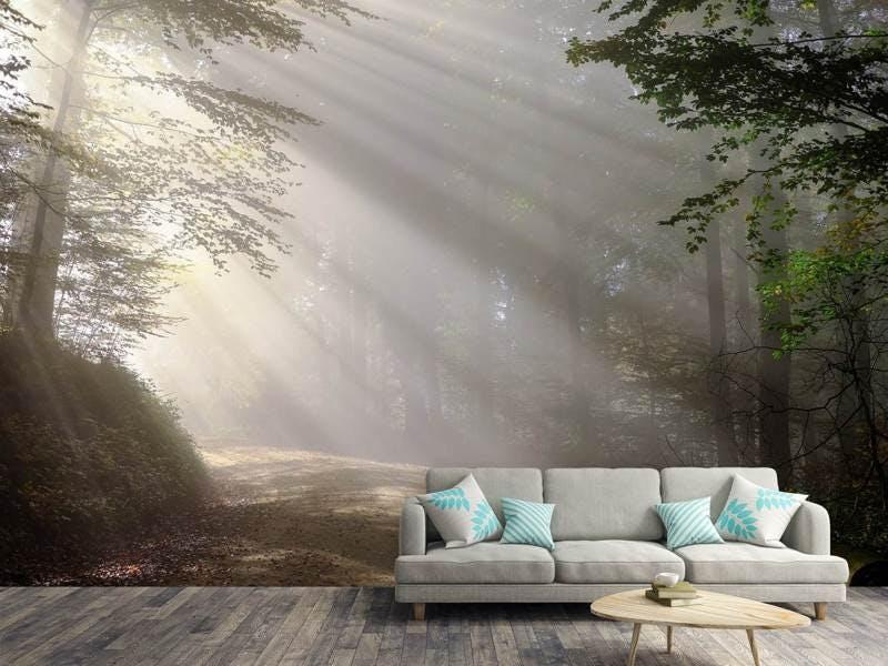 Fototapete Mystisches Licht im Wald