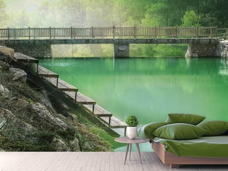 Fototapete Der grüne Teich