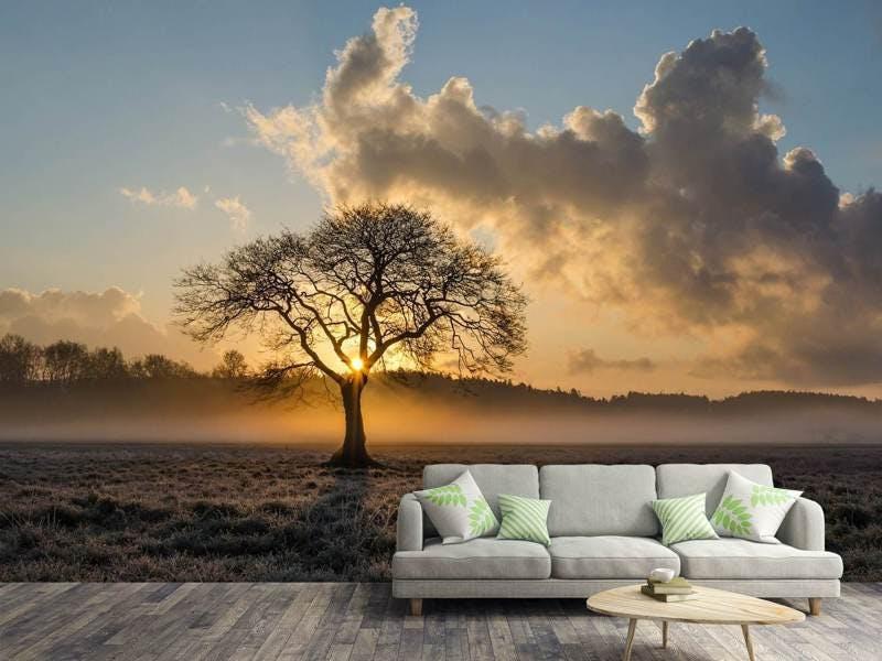 Fototapete Ein einsamer Baum