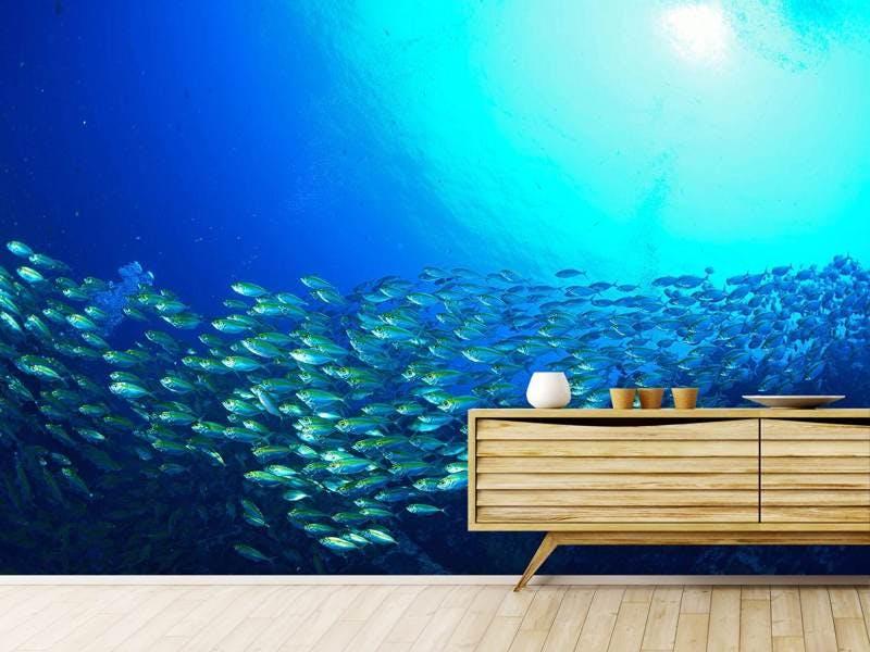 Fototapete Fischschwarm