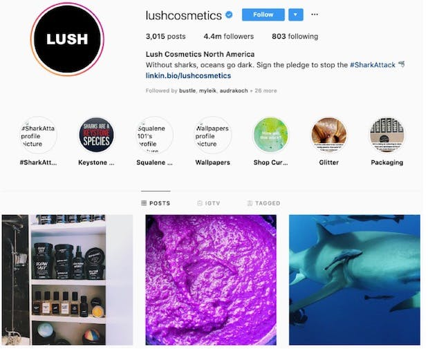 Lush's instagram page