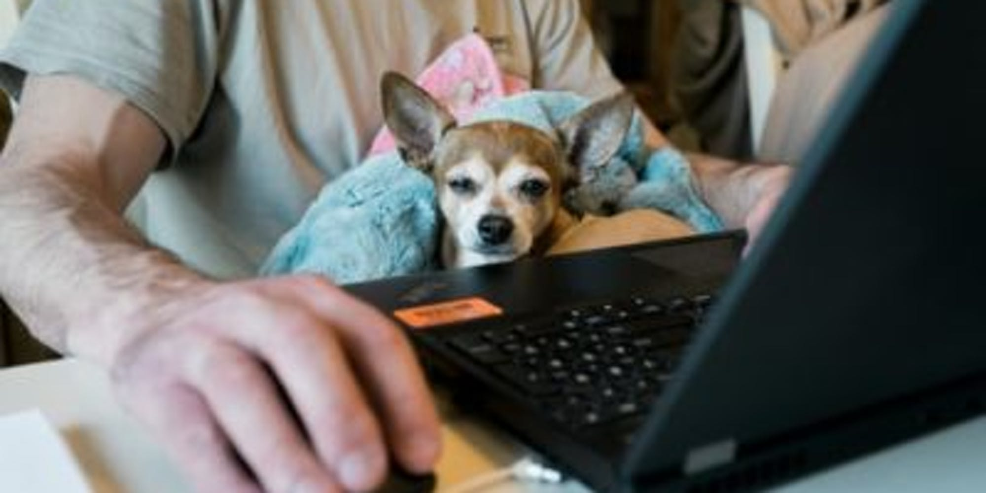 A man using their laptop while his dog sits in his lap