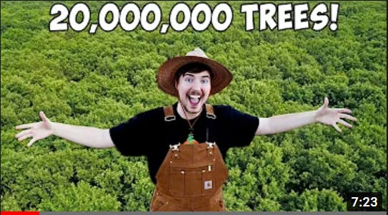 Planting 20,000,000 Trees, My Biggest Project Ever (Mr Beast)
