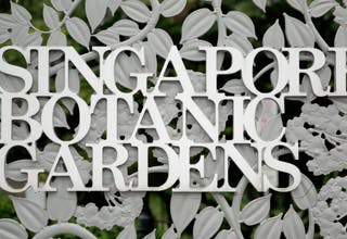 Singapore Botanic Gardens, UNESCO World Heritage Site National Parks Board