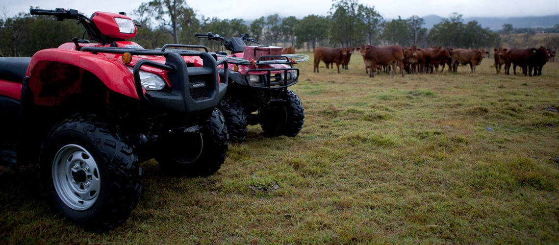 Honda TRX250TM, parked in the farm