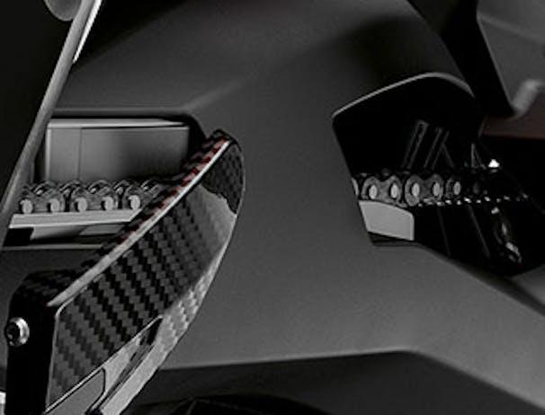 BMW S 1000 XR carbon engine guard